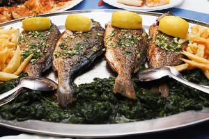 Mořské ryby a plody, Chorvatsko